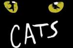 Cats - 2007 - Nederland